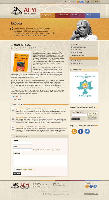 Diseño página web AEYI