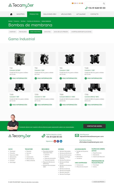 Diseño web TecaMyser
