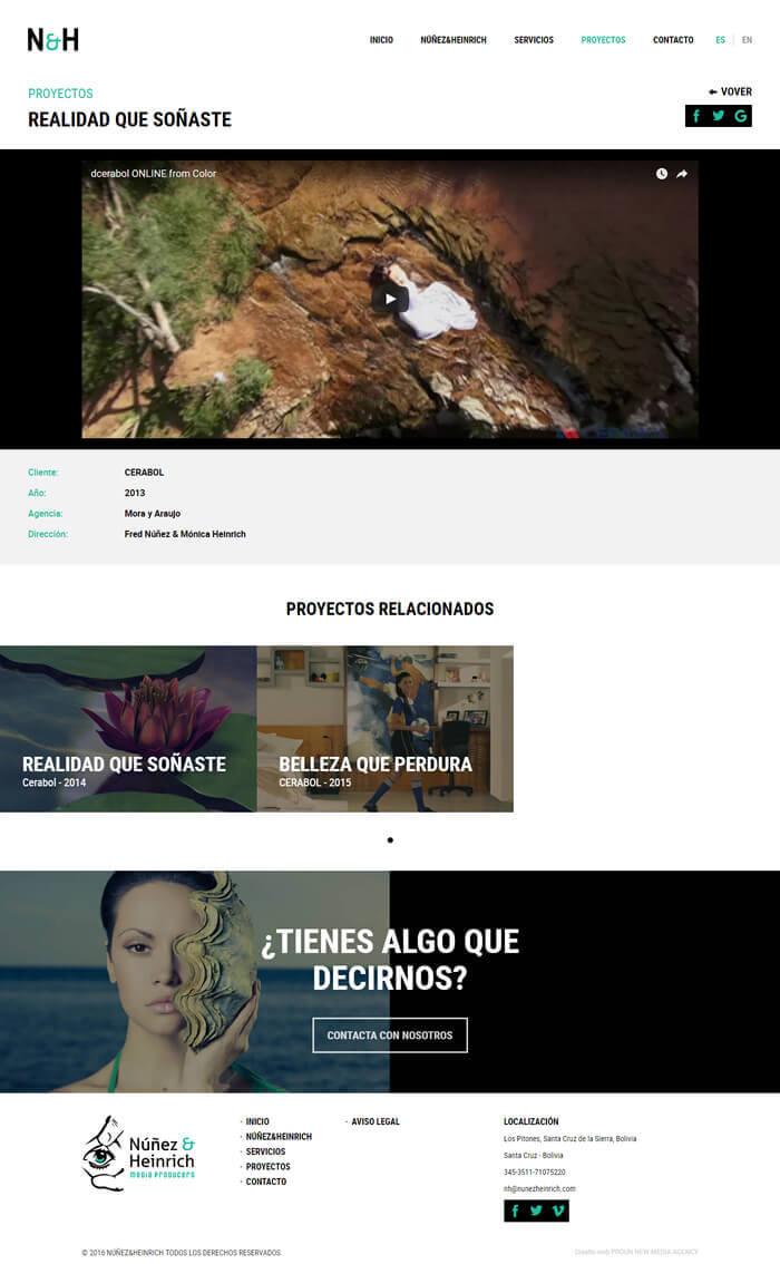 Diseño web Nuñez and Heinrich, pantalla Proyecto